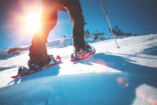 sněžnice, sportovní potřeby, zdraví, zimní sporty