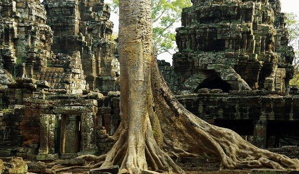 Angor Vat, Kambodža, chrámy