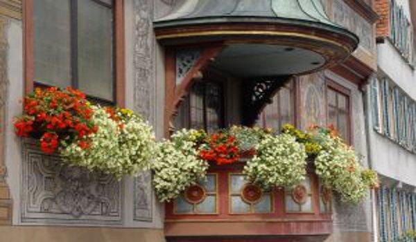 bydlení, balkony, zeleň a rostliny