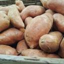 Batáty - sladké brambory pro zdraví a krásu