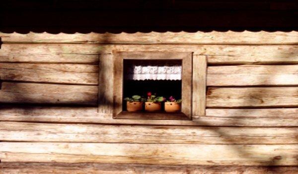 bydlení, dřevostavba, ekologie, energie, zdravý životní styl