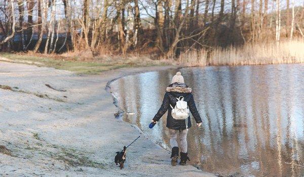 chůze, pohyb, prevence osteoporózy, zdraví, zdravé srdce, nord walking