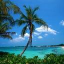 Surfování, trávníky a hazard na Bahamách