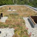 Jak na údržbu ploché střechy?