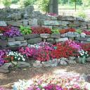Jak vytvořit skalku na zahradě?