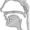 Zvětšená nosní mandle