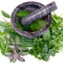 Léčivé bylinky nejen do čajů, vyzkoušejte bylinkové tinktury.