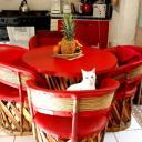 Červená barva v kuchyni vzbuzuje vášeň