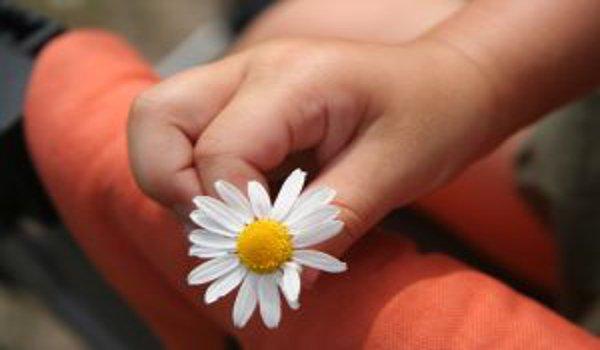 bydlení, dětské pokoje, ekologie, zdraví, děti