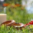 Domácí kefír lze snadno vyrobit z kefírových zrn a mléka