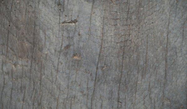bydlení, stavební materiály, dřevo