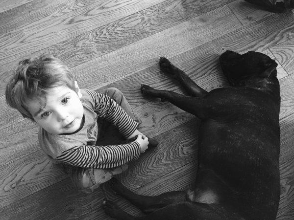 pes, chovatelství, děti