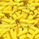 Hnědé a flekaté banány nepatří do koše, protože mají řadu předností!