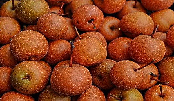 ovoce, korejská hruška, singo, zdraví, minerální látky, vitaminy, kocovina