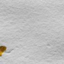 Hry s dětmi na sněhu