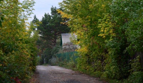 chaty , chalupy, chodníky, dlažba