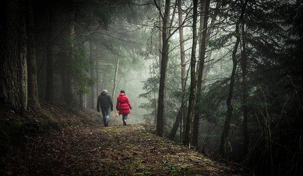 zdraví, zdravý životní styl, procházky, chůze, kondice, srdce