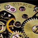 Jak vnitřní hodiny ovlivňují naši výkonnost aneb Sovy a skřivani v akci