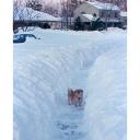 Jak vybírat sněhovou frézu