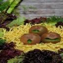 Kiwi zvýší vaši imunitu, zlepší náladu a pomůže snížit nadváhu