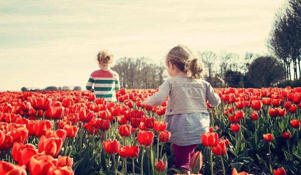 děti, rodiče, rodina, jedináček, výchova dětí