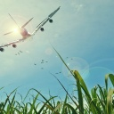 Letecká doprava dětí a těhotných žen má svá specifika
