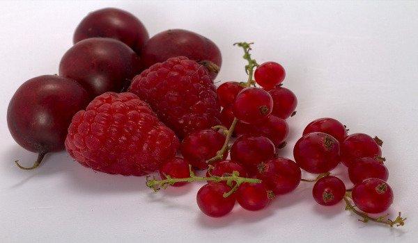 ovoce, rybíz, angrešt, jahody, rakovina, vysoký krevní tlak, cholesterol, vláknina