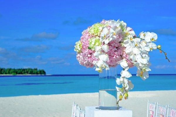 Meledivy, moř, cestování, dovolená