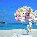 Maledivy - ráj, který postupně mizí do moře