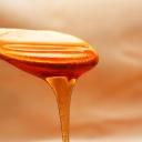 Med v zimě nejen do čaje, ale také na pleť, vlasy a tělo