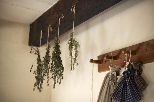 bylinky, sušení bylinek, zdraví, přírodní léčba
