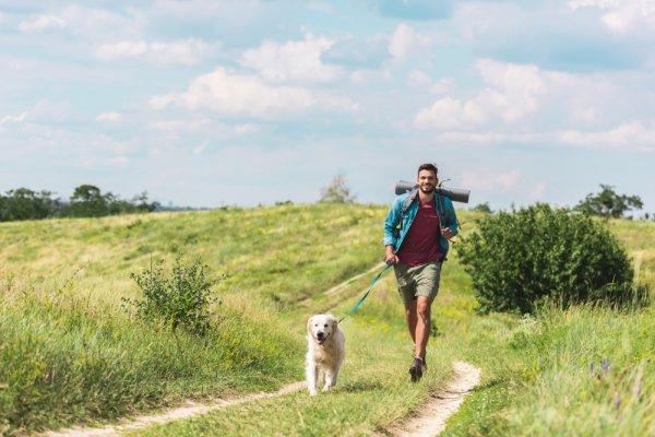 vodítko pro psa, bezpečnostní pás pro psa, túra se psem, postroj pro psa, pitný režim psa, krmení pro psa