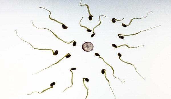 ženy, antikoncepce, hormonální antikoncepce, Mirena