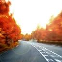 Omezení rychlosti na silnicích nevede ke snížení nehodovosti
