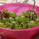 Ovoce a zelenina - denně pět porcí pro zdraví