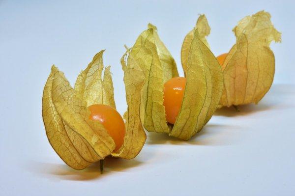 ovoce, vitaminy, minerály, Physalis, mochyně,