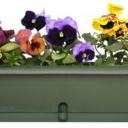 Pestrý květinový karneval na balkoně