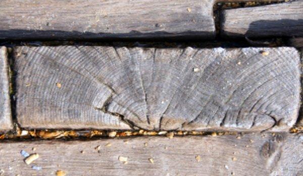 dřevodomy, dřevěné konstrukce, údržba a renovace dřeva