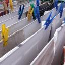 Praní prádla při nízkých teplotách ohrožuje zdraví nejen alergiků