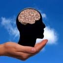 Pravá nebo levá mozková hemisféra? Která je u vás dominantní?