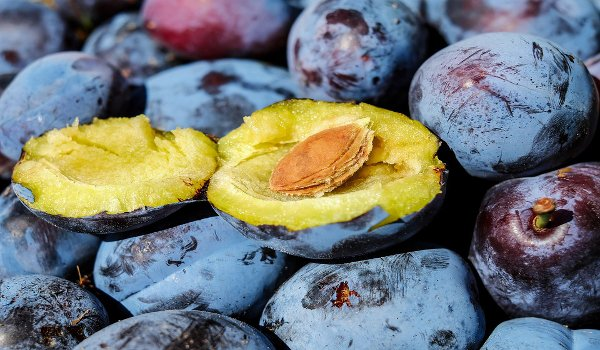 zácpa, zdraví, ovoce, pohyb