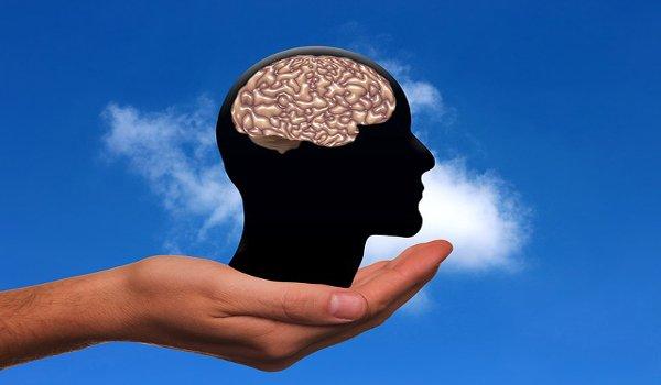 sex, mozek, pravá hemisféra, levá hemisféra