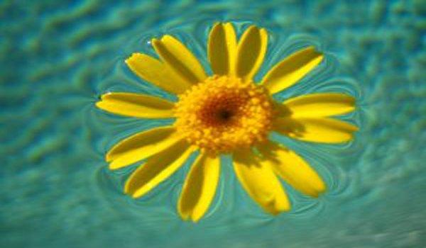 venkovní bazény, bazénová chemie, údržba bazénů