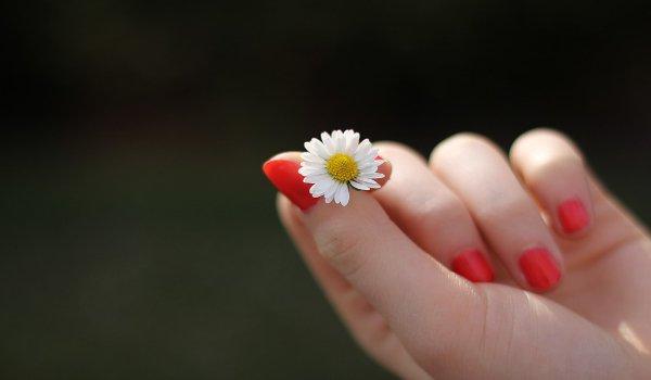 láska, nevěra, věrnost, vztahy, manželství