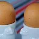 Vejce k snídani - dobrý start do nového dne