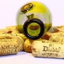 Víno není terapie na úzkost