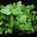 Zápach z úst odstraní bylinky, jablko a zelený čaj