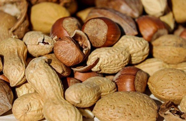tuky, děti, zdravá strava pro děti, zdraví, ořechy, ryby
