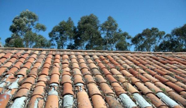 stavba domu, střecha, plochá střecha, zelená střecha