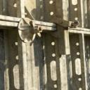 Ztracené bednění - rychlá montáž hrubé stavby